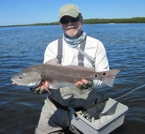 Capt. Rick waded a Sarasota Bay flat and caught and released this red on a Grassett Flats Minnow fly in a previous October.