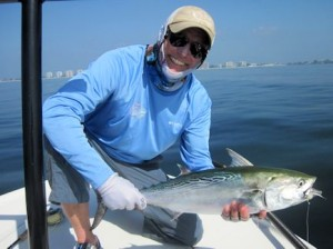 November shoud be a great month for false albacore (little tunny) in the coastal gulf. Mike Santangelo, fom Naples, caught and released this one on a fly while fishing with Capt. Rick Grassett in a previous November.