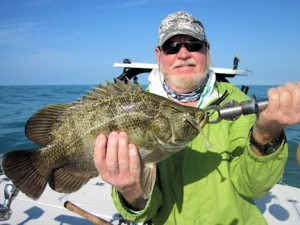 March should be a good month for tripletail in the coastal gulf. Shane Nichols, from MA, caught and released this one on a DOA Shrimp while fishing with Capt. Rick Grassett in a previous March.