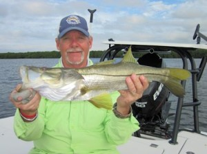 Mike Perez, from Sarasota, with a nice snook caught and released on a top water plug while fishing Sarasota Bay with Capt. Rick Grassett in a previous December.