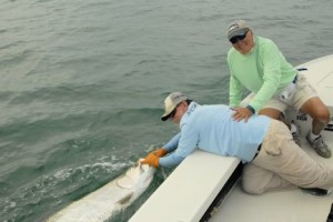 Capt. Rick revives a tarpon caught by Dennis Ondercin, from OH, before releasing while fishing the coastal gulf with Capt. Rick Grassett in a previous May.