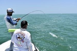 Jeb Mulock, from Bradenton. battles a tarpon while fishing with Capt. Rick in the coastal gulf.