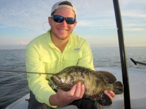 Raul Ortiz, from Longboat Key, with a tripletail caught and released on DOA Shrimp while fishing Sarasota Bay with Capt. Rick Grassett in a previous August.